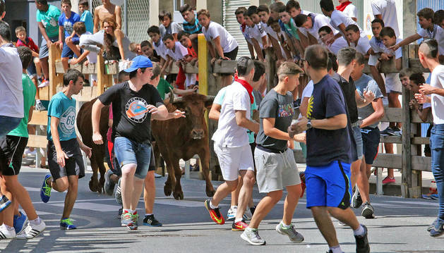 Burlada hará una consulta popular sobre la suelta de vaquillas en fiestas
