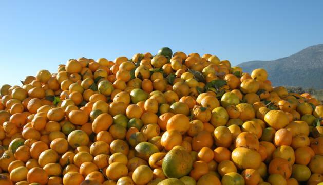 Fruta en buen estado tirada al contenedor.