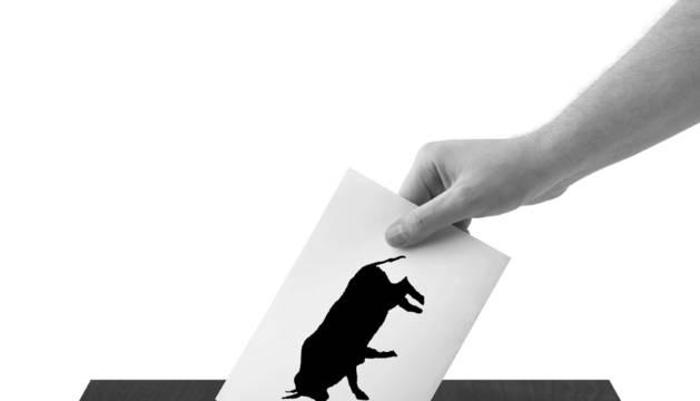 Las vaquillas de la comarca de Pamplona, a las urnas