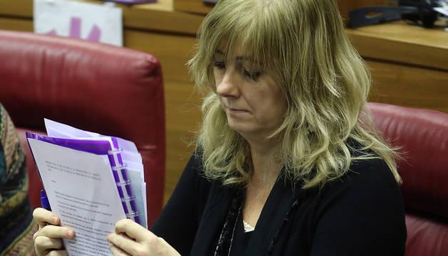 Ollo dice que el informe de Etxarri es del Ayuntamiento y no le corresponde valorarlo