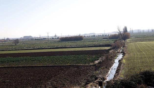 Campos afectados por la concentración parcelaria situados en el término El Corquero de la localidad.