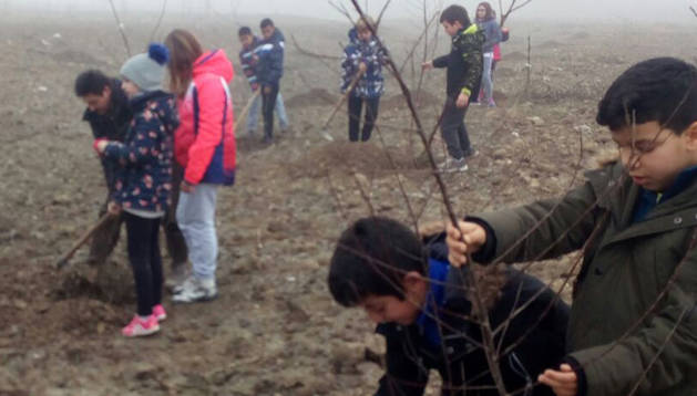 Los escolares se afanan en la plantación de los árboles.