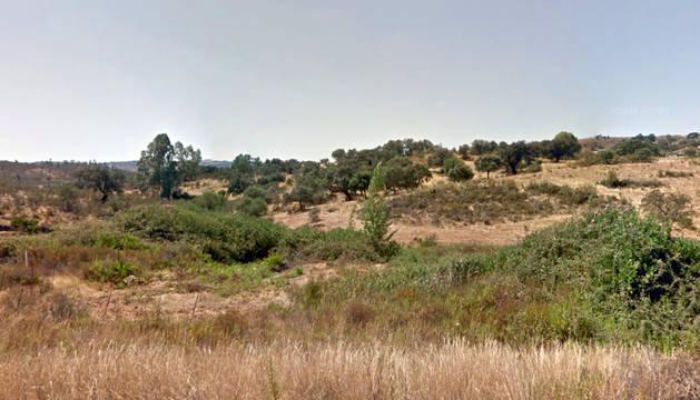 Paisaje de dehesa en Cabezas Rubias (Huelva).