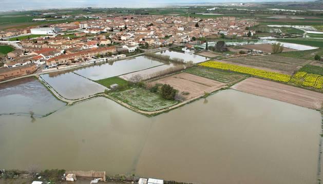 El Ebro, este viernes por la tarde, a su paso por Buñuel.