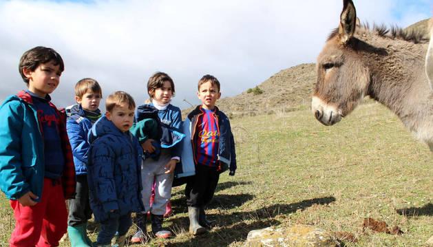 El Santuario Animal 'Corazón Verde' está abierto a recibir visitas de colegios y asociaciones.