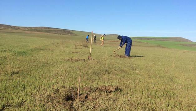 Foto de alumnos del ciclo Agroecológico durante la plantación.