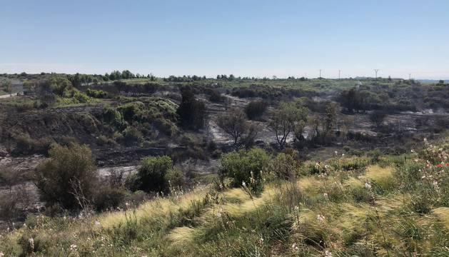 Un incendio calcina diez hectáreas en Mélida