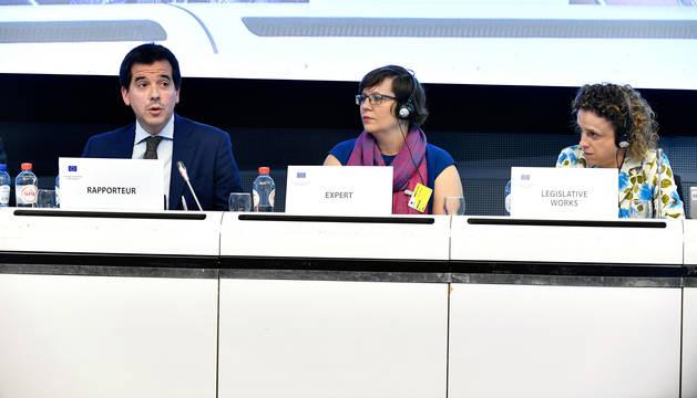 foto de Mikel Irujo, delegado navarro en Bruselas, en un momento de su comparecencia en el Comité de las Regiones.
