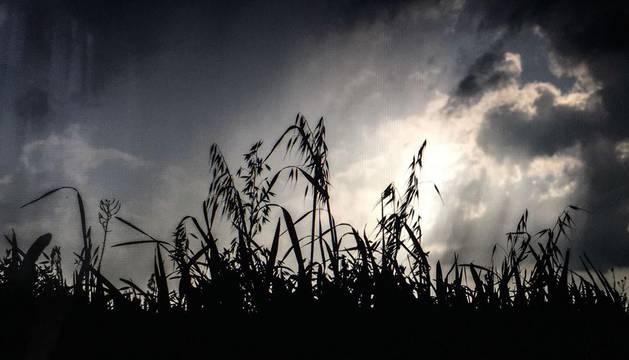 Lunes con tormentas intensas por la tarde en Navarra en una semana de bochorno