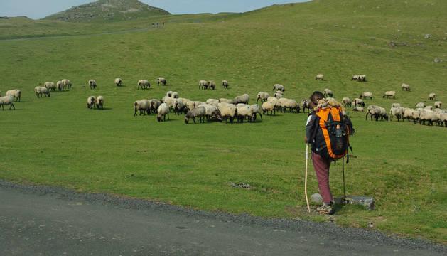 Imagen de una peregrina en Roncesvalles