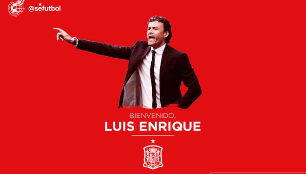 Luis Enrique, nuevo seleccionador español
