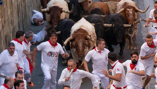 Cabestros en cabeza, flancos y retaguardia arropan a los Fuente Ymbro en santo Domingo.rubén albarrán