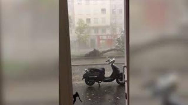 Una tormenta torrencial siembra el caos en Zaragoza