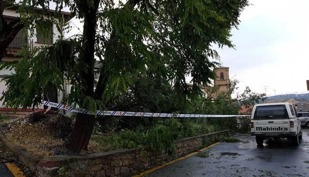 Fotos de los desperfectos provocados por la lluvia en Tafalla