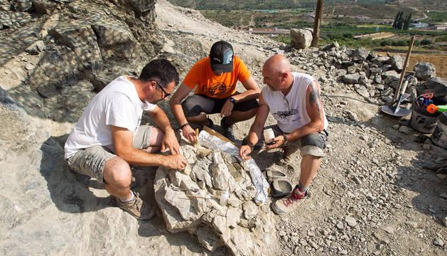 Ultiman la excavación de un espinosaurio de 120 millones de años en La Rioja