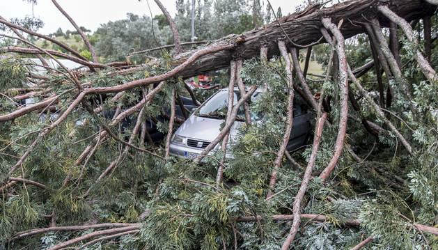 La secuoya aplastó dos vehículos, que ayer ya habían sido retirados, así como las ramas. El aparcamiento funcionó con normalidad.