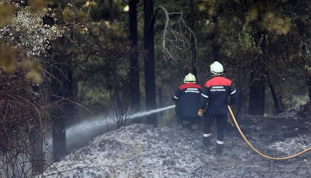 Incendio en Obanos