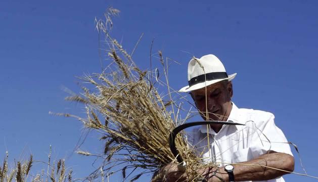 Fotos del Día del Mundo Rural en Miranda de Arga