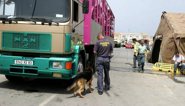 Agentes de la Guardia Civil registran un camión de feriantes en Ceuta.