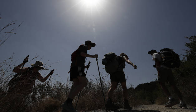 foto de  Un grupo de peregrinos realizan una de las etapas del Camino de Santiago, a la altura de la localidad navarra de Zabaldika.