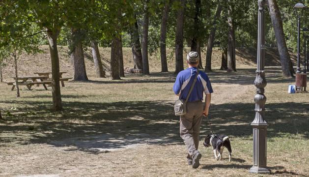 Una persona paseando por el parque de La Nogalera.