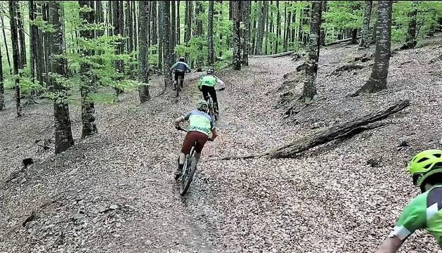 Un grupo de ciclistas bajando por una zona boscosa