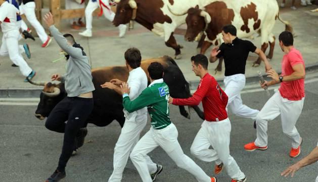 Los toros de la ganadería Aguadulce, de Sevilla, han protagonizado un segundo encierro rápido y limpio.