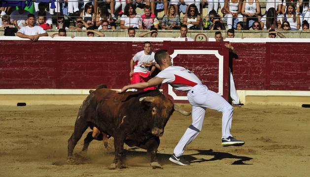 Aritz López recorta al toro Cordobés de Macua en la tanda clasificatoria. Este recorte le hizo pasar a la final.