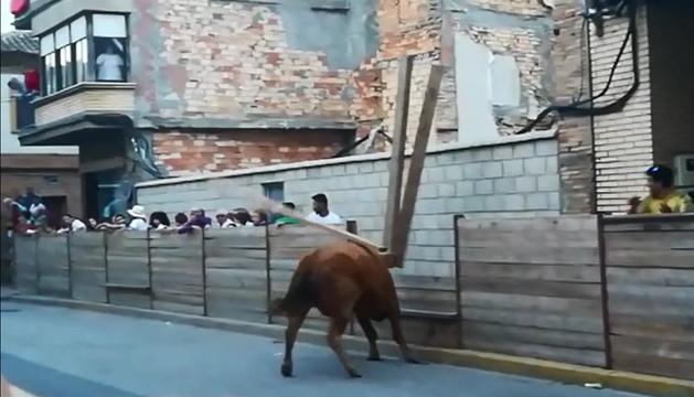 El toro arranca parte del vallado