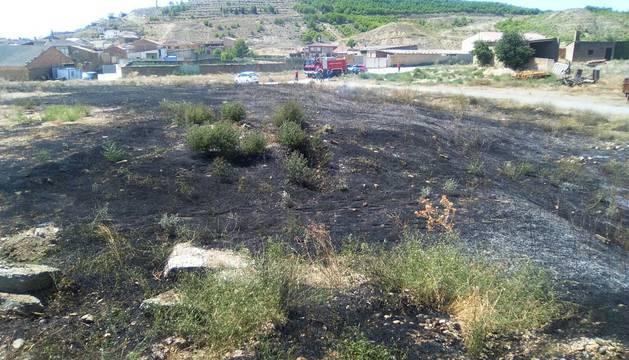 Zona afectada por el fuego en Santacara
