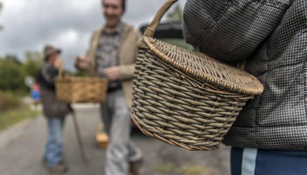 En temporada alta de setas, los recolectores preparan sus cestas de mimbre para tantear la suerte en busca del fruto esperado.