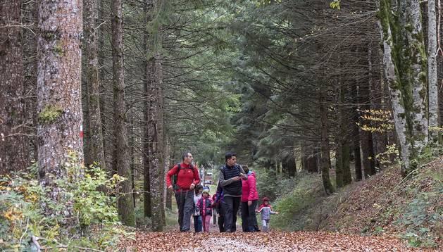 Un grupo de excursionistas, en uno de los senderos que surca las entrañas de Irati.