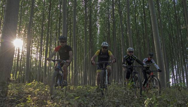 Foto de un grupo de cicloturistas aprovechó ayer el sol en Mendavia.