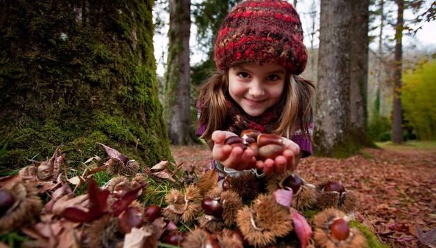 Una niña recoge castañas en Bertiz