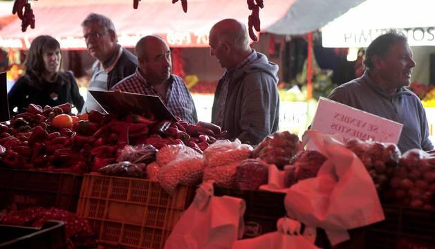 """Entre septiembre y noviembre, la campa de la Fundación Mena de Puente la Reina se transforma en territorio rojo donde el pimiento, en sus en múltiples variedades, se erige en protagonista. Los productores locales no ocultan su satisfacción ante una campaña que, ya adelantan, se presenta """"muy buena"""""""