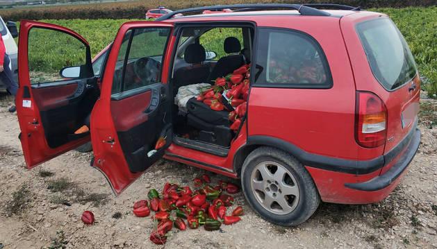 Investigadas dos riojanas por robar 400 kilos de pimiento en Viana