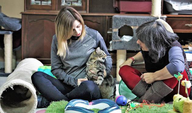 Steslava Sotyanova (izquierda) y Mari Carmen Foronda Palmero con uno de los gatos en el refugio que ha acondicionado Katu Kaleko.
