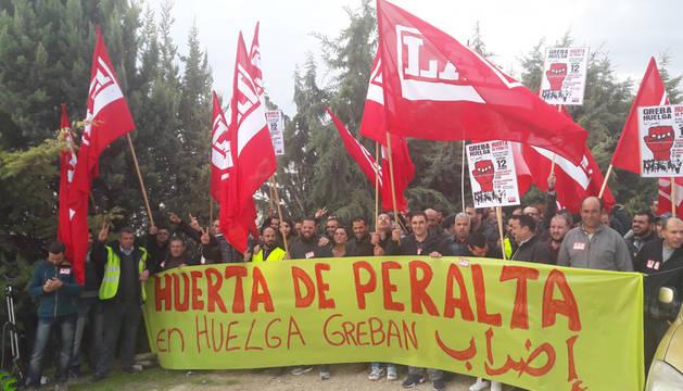 Un 80% de los trabajadores de Huerta de Peralta secundan la huelga