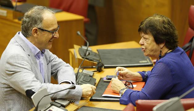 El portavoz de EH Bildu, Adolfo Araiz, habla en el salón de plenos del Parlamento con la consejera de Interior, María José Beaumont.