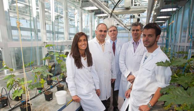 José María García-Mina Freire, con su equipo de investigación de la Universidad de Navarra
