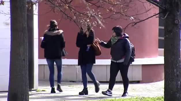 El Gobierno aprueba el nuevo Plan de Empleo Juvenil
