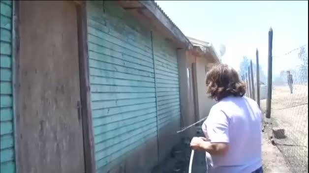 Alerta en Chile tras declararse casi 200 incendios en apenas cuatro días