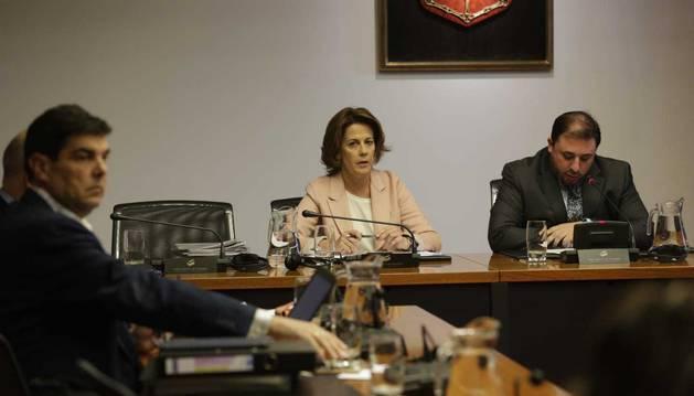 Imagen de Yolabda Barcina, sentada en la mesa de la comisión CAN.