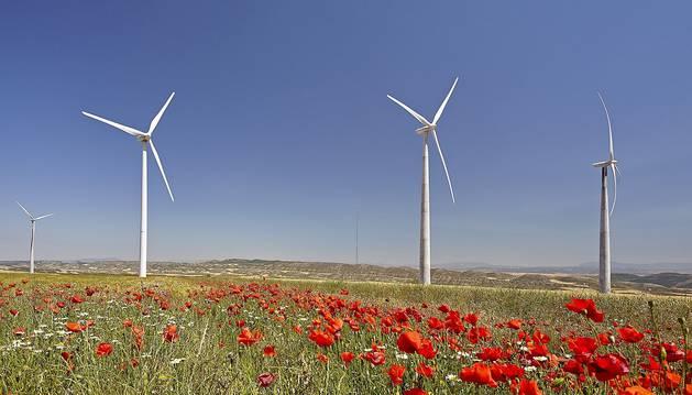 Imagen de un parque eólico.