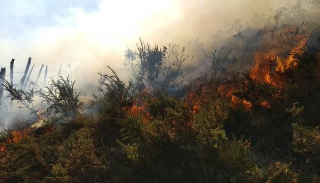 foto de El incendio se ha originado en una zona de pino de repoblación y matorral de altura
