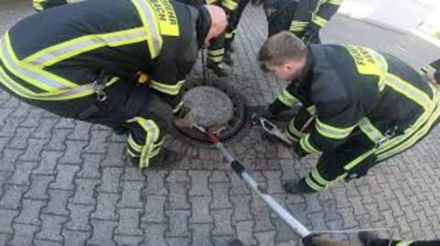 Siete bomberos para rescatar a una rata gorda atrapada en la tapa de una alcantarilla