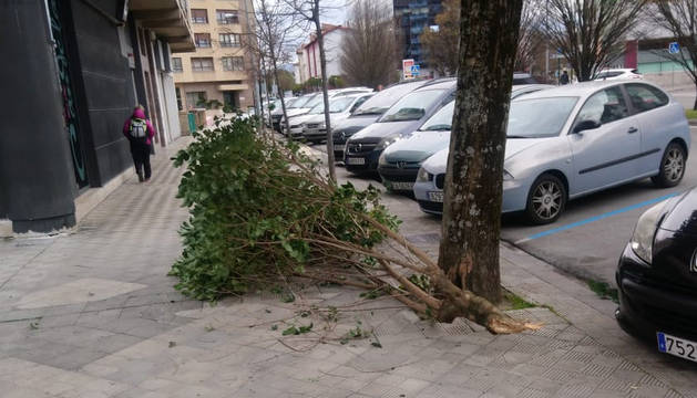 El fuerte viento provoca la caída de ramas y vallas de obras en Pamplona