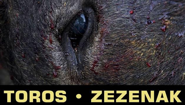 Cartel de la exposición 'Toros/Zezenak'.