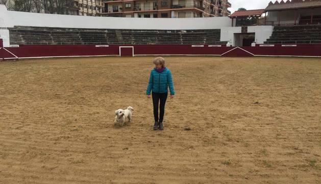 La plaza de toros de Estella vive su primer día convertida en pipican