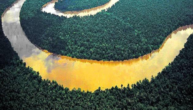 Los países del Tratado de Cooperación Amazónica no quieren dejar su soberanía digital en manos de una empresa.